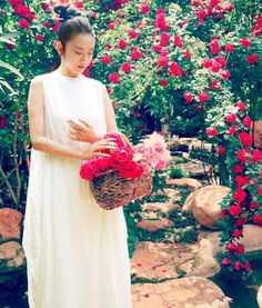男主叶辰女主苏雨涵的小说是什么?图片