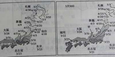"""5月1日本看樱花 """"樱花前线""""为游客预测日本全国各地樱花的花期"""
