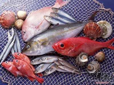 鱼有没有心脏 吃哪些鱼对心脏更有益